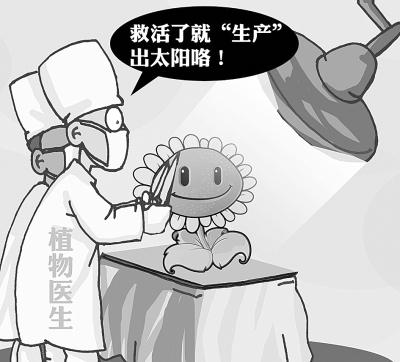 """时下,武汉出现了""""植物医生"""",花草病了可以上门""""会诊"""".图片"""
