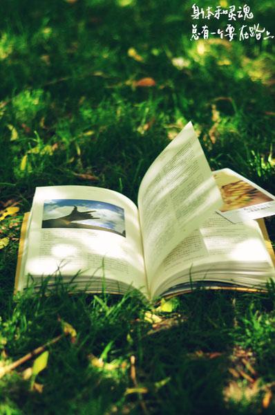 在旅途中带上肥肥鱼的书细细品读