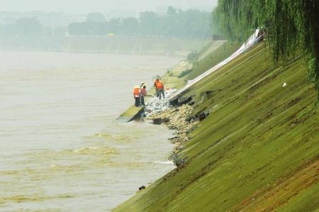 7月19日,工作人员抢修垮塌的江堤。