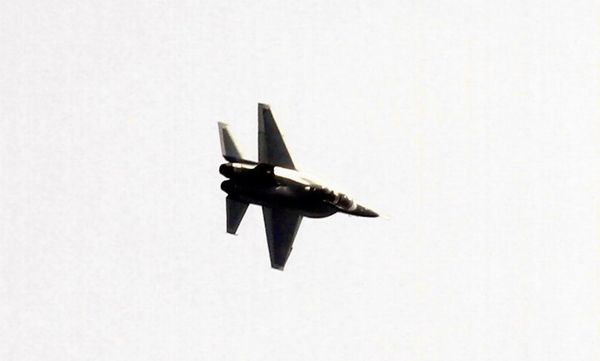 美国:发现重要证据 中国官方故意泄露歼-60(组图)