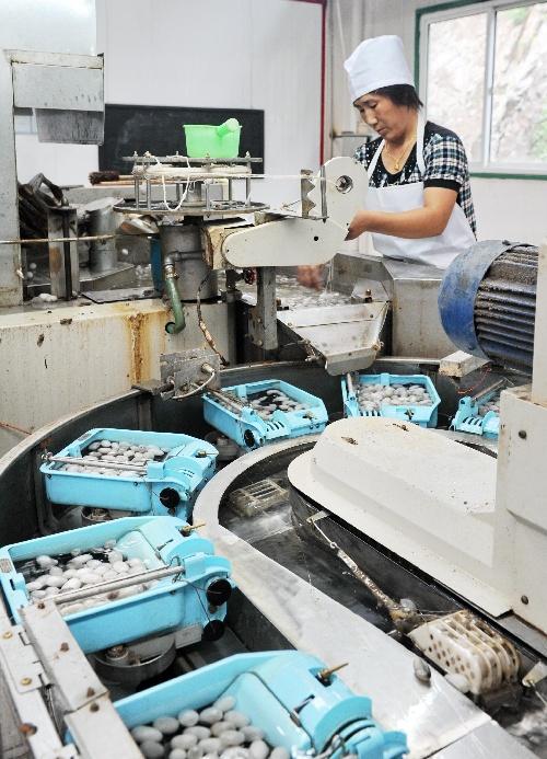 (经济)(3)桑蚕养殖富山乡图片