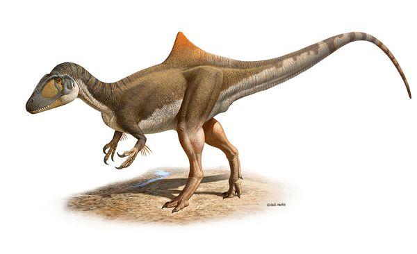 性爱网站哪里有_恐龙饭量有多大?草食性恐龙每天食量相当于体重百分之