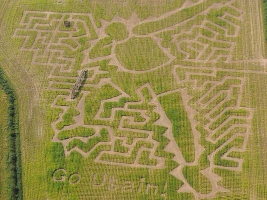 """英国特伦特河畔伯顿镇的巨型""""博尔特""""草坪迷宫网页截图"""