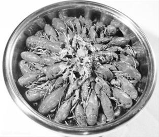 小龙虾到底能吃不?(组图)-搜狐滚动
