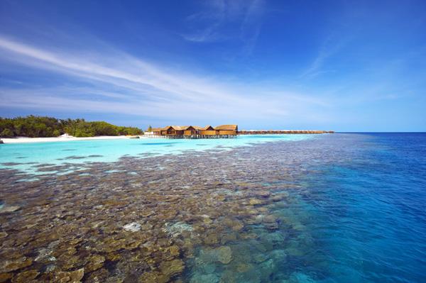 美丽的千岛之国马尔代夫接待中国游客人次创新高
