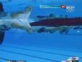 奥运视频-彼德森晋级决赛 女子200米蛙泳半决赛