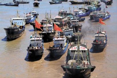 昨天,浙江省台州市金清新闸外港的大批船只有序进闸回港避风。