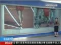 视频-央视东方时空力挺刘翔 深度解析驳表演论