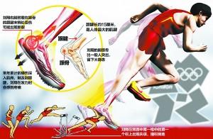 在伦敦奥运会男子110米栏的预赛中,刘翔在跨第一个栏时重重摔倒在地,他用手捂着受伤的部位,表情痛苦。一时间,刘翔的右脚跟腱成了关注点,刘翔团队请来英国著名运动医学足踝专家为他手术。