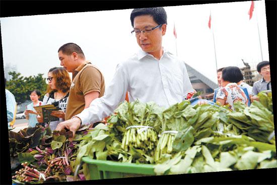 广州 艾修煜/由厨余垃圾转化肥培育的环保蔬菜大受欢迎艾修煜摄