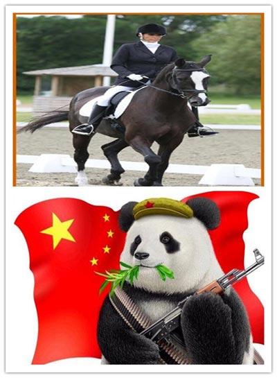 遛熊猫与马术