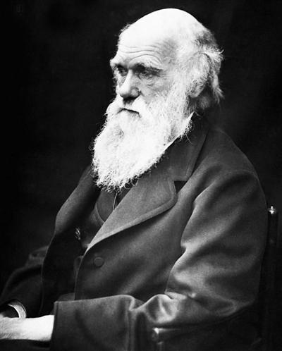达尔文像。 资料图片