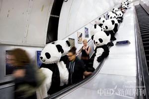 """7月4日,""""熊猫人""""在位于伦敦市中心的查林十字街地铁站乘坐扶梯。图/CFP"""