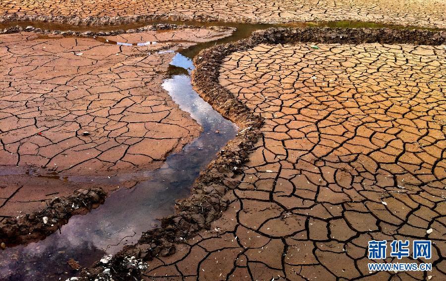 ...降雨,古城区著名景点黑龙潭公园池水已经枯涸,裸露的潭底在阳... (33)