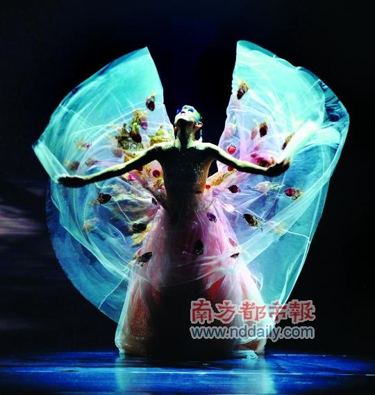据了解,杨丽萍请来了美术指导大师叶锦添担当《孔雀》的舞美和服装