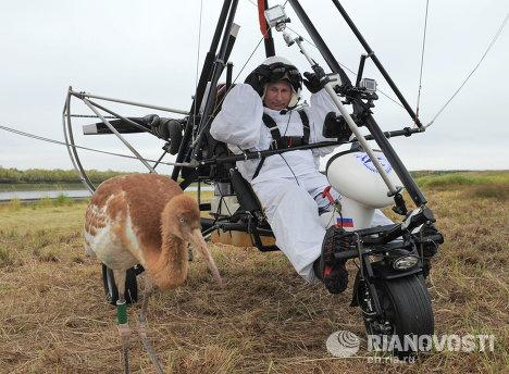 普京驾驶滑翔机,引导鹤群踏上迁徙之路。