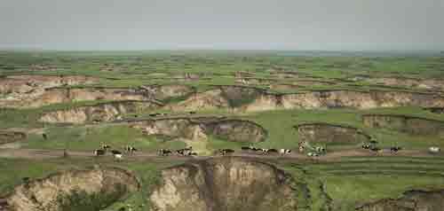 呼伦贝尔草原矿区现上千沉陷坑 似月球表面(图)