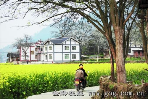 新农村三合院设计图图库 农村三合院池塘设计 农村三间楼房设计图