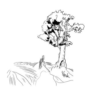 莲花祈祷手绘图