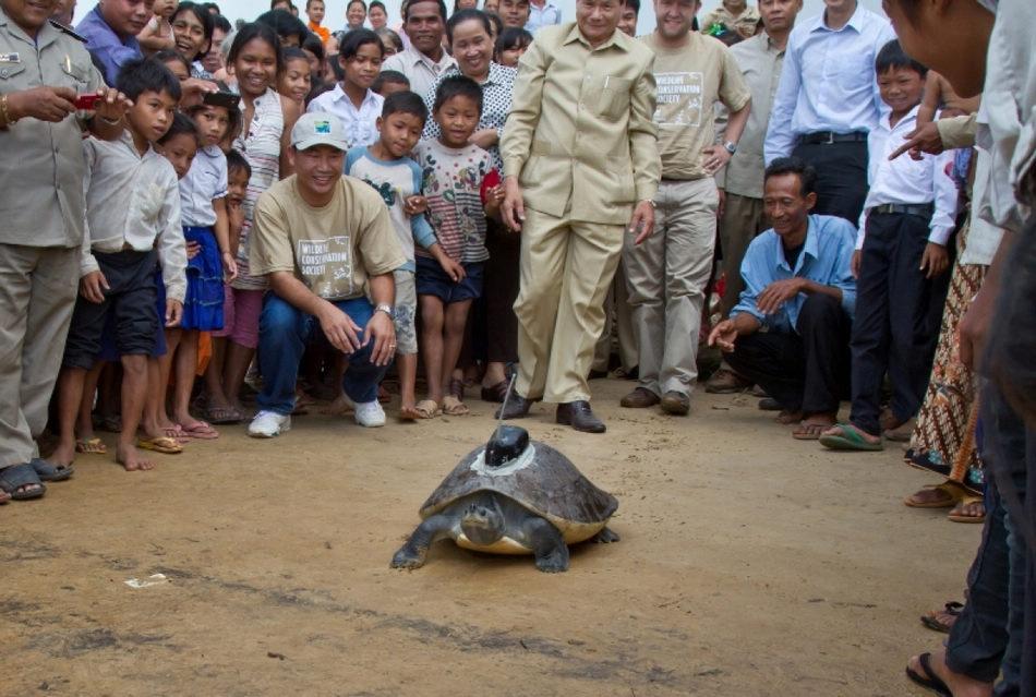 濒临灭绝的亚洲珍稀动物[组图]
