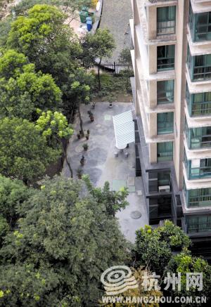 毁绿化 浇水泥 摆盆景打造了100平米私人庭院(图)图片