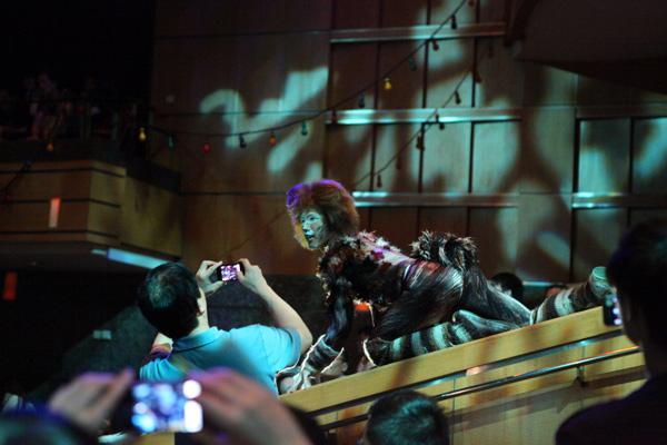 """上海大剧院每晚都会吸引无数中外看""""猫""""人"""