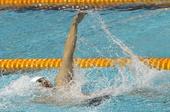 图文:2012全国游泳锦标赛 掀起水花