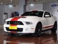 [视频看车]美式肌肉Style福特野马Shelby