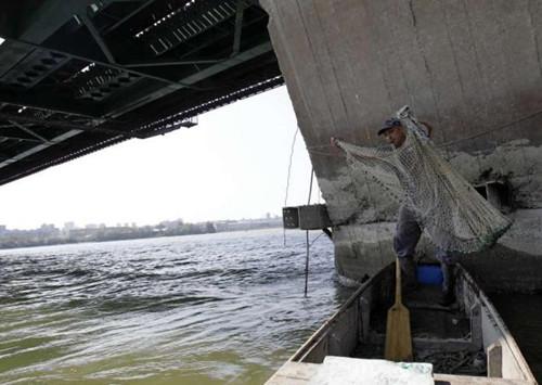 葛瑞比经常在这座桥附近边捕鱼边注视着桥,以防有人轻生。
