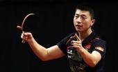 图文:男乒世界杯马龙夺冠 马龙庆祝获得冠军
