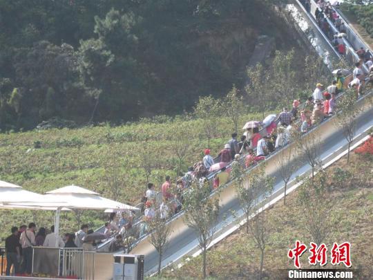 三峡大坝游客换乘中心停车位爆满高松摄