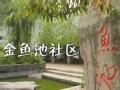 《今日京华》20120922 金鱼池社区