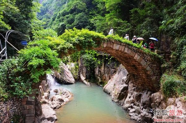 古桥上绿荫缠绕,仿佛千百年来就这样安然地跨在溪水之上
