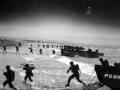 彩色二战:霸王行动