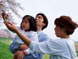 最受中国家庭欢迎的出境游