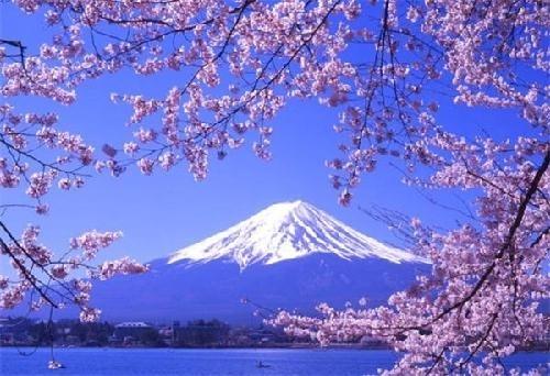 日本:医院不得盈利,社会福利开支占GDP的18.6%。
