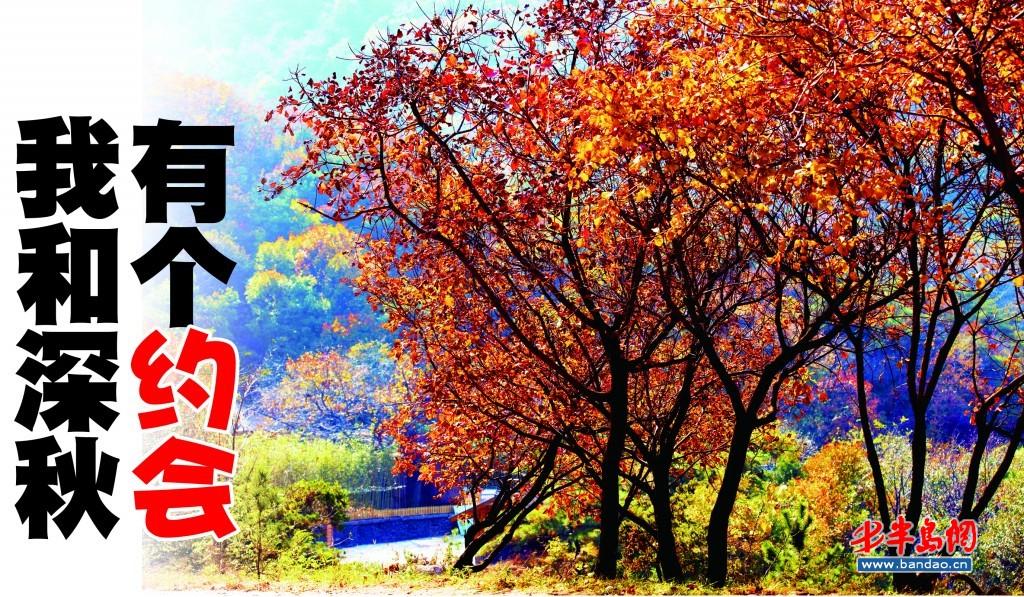 九仙山,李崮寨   红叶是深秋最亮丽的风景,想拍红叶,不用非跑到香山