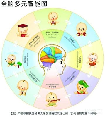 """2003年1月,日本启动了""""脑科学与教育""""研究项目,逐步构造理想的教学图片"""