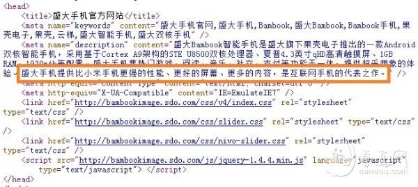 评论:盛大手机官网改版 暗藏两大悬疑