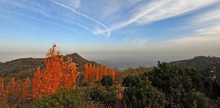 西安/深秋的沣峪口层林尽染,让人流连。(资料照片)