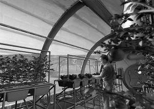 """火星殖民者在火星""""透明穹顶建筑""""内栽花种草示意图"""