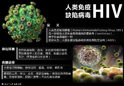 (图表)[世界艾滋病日]人类免疫缺陷病毒hiv