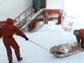 中国南极记忆第13集:极夜心语