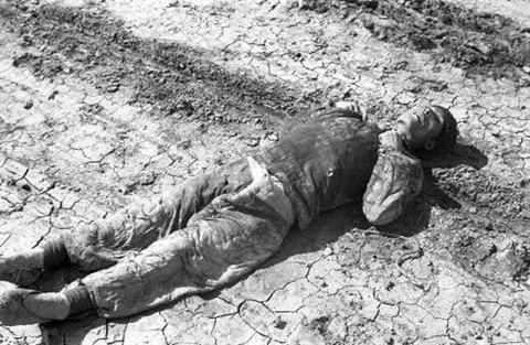 1942:罕见的中原大饥荒(组图)