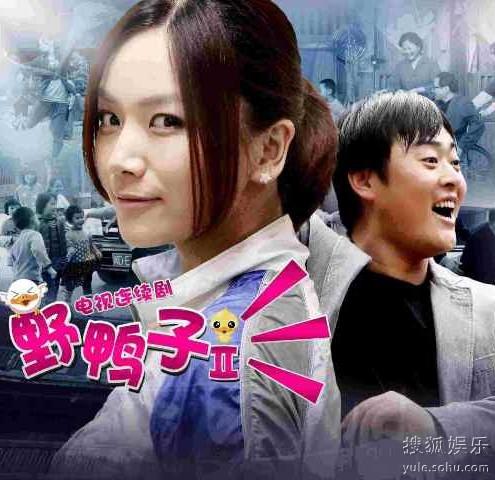 野鸭子2全集迅雷下载[2013最新]