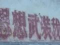 外交部翻译惊险记