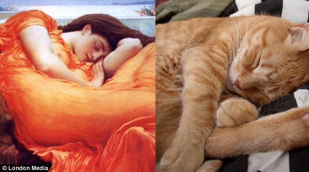 红红的脑袋:弗雷德里克-莱顿( Frederic Leighton)的《燃烧的六月》让这只米黄色的小猫酣然入睡。