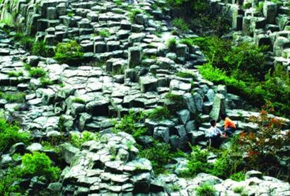 桃渚 珊瑚奇石