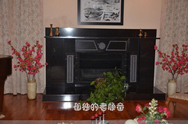 客厅里用来取暖的壁炉。