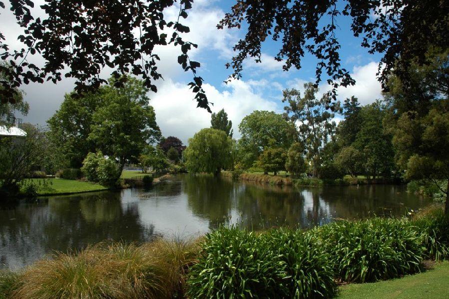 树林河水简单风景手绘